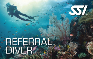 SSI Referral Diver Curacao